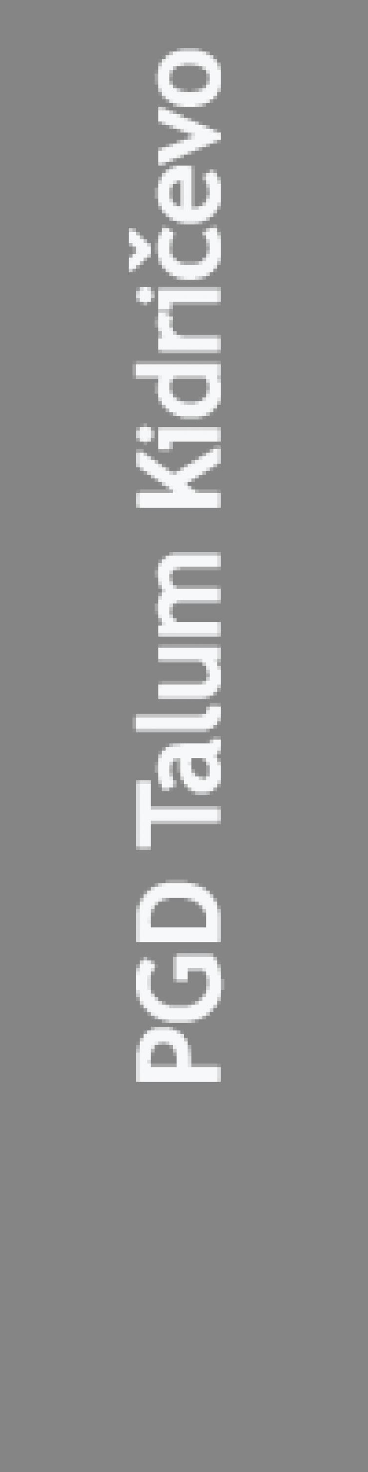 TalumKidričevo